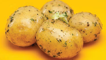 Baby Boiled Potatoes