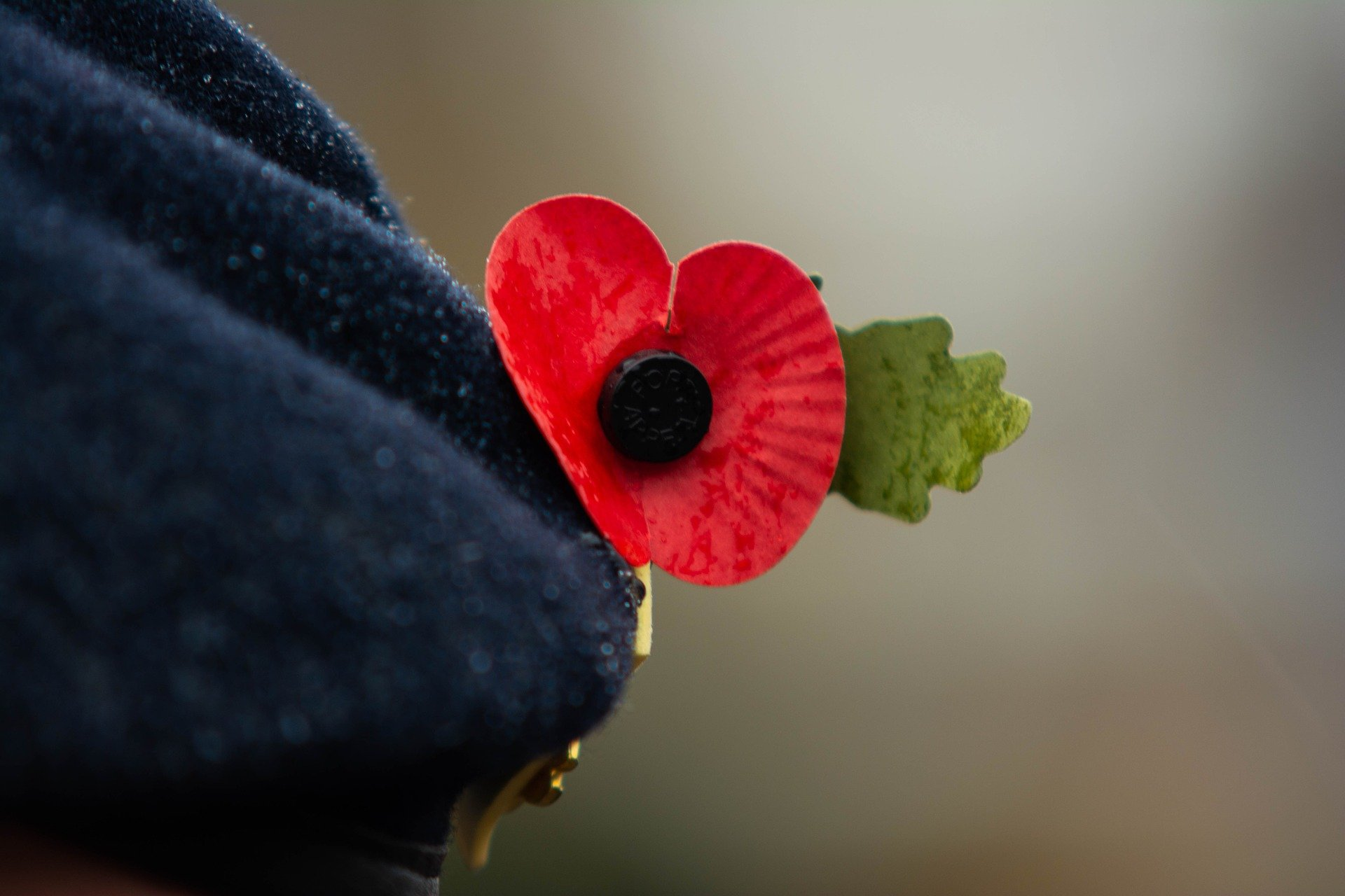 Remembrance Day 3811394 1920