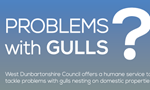 Problem with gulls poster, asking to book an online service